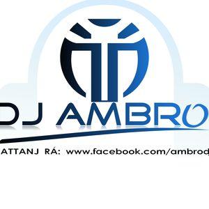 Dj Ambro - No Music. No Life