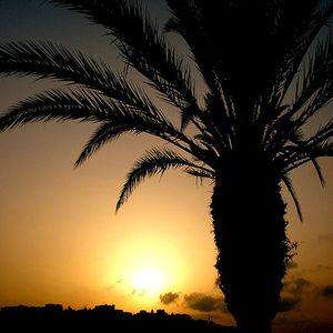 Until Sunrise