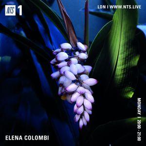 Elena Colombi - 25th January 2021