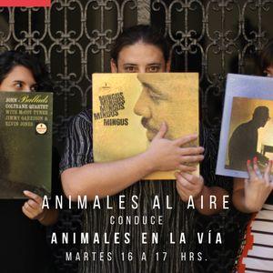 ANIMALES AL AIRE 25 - INVITADOS SALES DE BAÑO