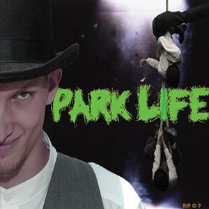 PARK LIFE 26 NOVEMBRE 2010 con DODO DJ 2 parte
