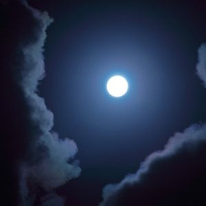 To The Moon _2013 6 15