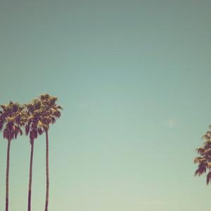 Summer Languid