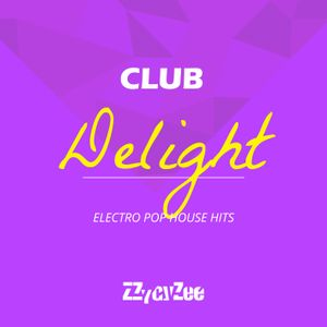 Club Delight - Electro Pop House Hits Mix 2011