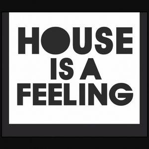 MrVinyl - House Is A Feeling