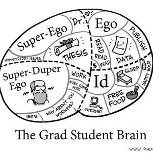 First Year in Grad School