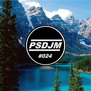 Patrick Simard DJ Mix Episode #024(Top 40) [December 2016]
