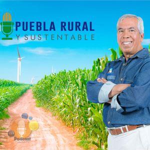 PUEBLA RURAL Y SUSTENTABLE 17 AGOSTO 2016