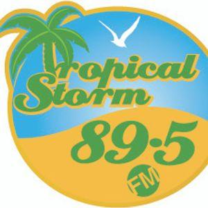TROPICAL STORM PROMO CD - ALL 2K11 - DE PERFECT MIX