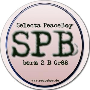 GULLY VS GULLY - Selecta PeaceBoy - WUN N WILD