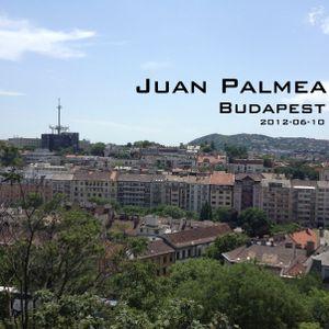 Juan Palmea in Budapest (2012-06-10)