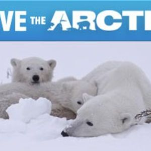 My special Save the Arctic House mixtape!