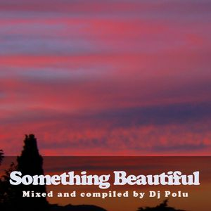 Dj Polu - Something Beautiful 11