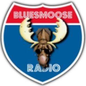 Bluesmoose 1114