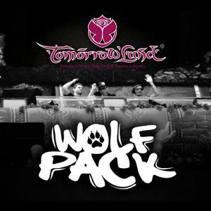 Wolfpack - Live @ Tomorrowland, Belgium 2013-07-28