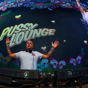 "Paul Elstak - Tomorrowland 2014 ""Pussy Lounge"""