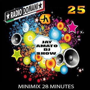 Jay Amato DJ Show #25 - (RadioMix 28 min.) 27th-Feb. 2014