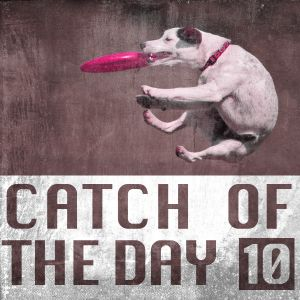 Catch of the Day Volume 10