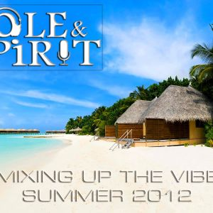 Mixing Up The Vibe (Summer 2012)