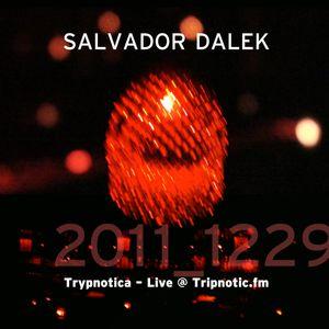 Day 065.04 : ReFresh - Salvador Dalek Live (2011_1229) at Tripnotic.fm