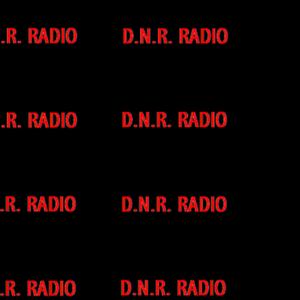 DNR Radio Episode 18 (8/24/06)