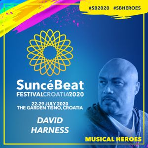 Musical Heroes Guest Mix #30 David Harness
