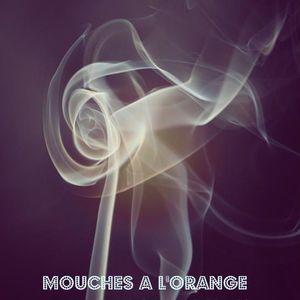 Mouches a l'orange - Sixty Nine (69) part 3 live 2010
