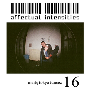 Affectual Intensities 16