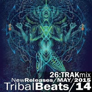 TECH HOUSE 14 2015 TribalBeats