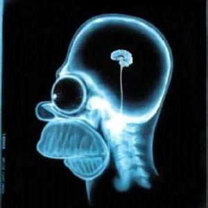Nüchtern is nie gut. Minimale Gedankenstruktur schon.