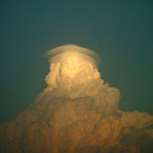 Jay Synflood - brain cell tissue 01/2007