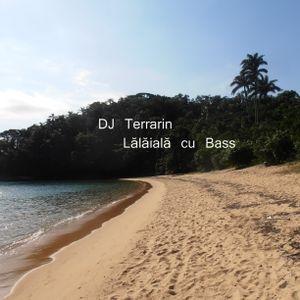 DJ Terrarin - Lălăială cu Bass