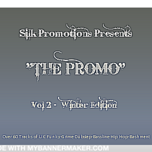 The Promo Vol 2 - Silk Promotions