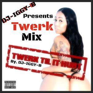 DJ-IGGY-B (Twerk Mix)