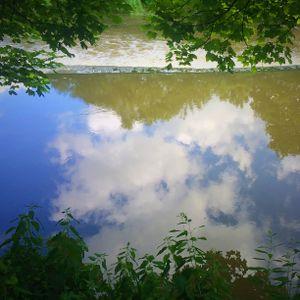 TheMiddenHill 29: Summer Reflections