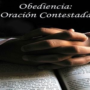 Obediencia:  Oración Contestada