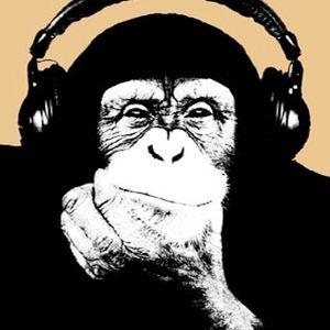 Mixtape:    -Verdammt Frisch-     by  T_O
