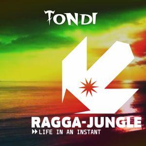 TONDI - Life in an instant ( RAGGA-JUNGLE )