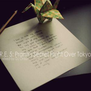 Rediscovered Everything 5: Prane's Secret Flight Over Tokyo [Progressive House & Trance]