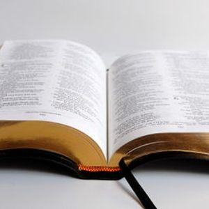 """A. Castellani """"Che i nostri occhi si aprano"""" Matteo 20:29-34"""