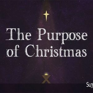 The Purpose of Christmas pt. 3: Peace on Earth