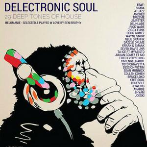 Delectronic Soul - Melonamie - 30 Deep Tones of House - Deep House Mix
