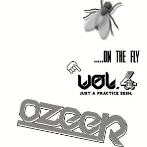 on the fly vol.4