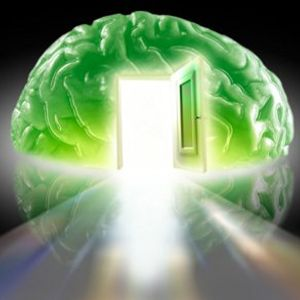 20140723 Teachings for the Electronic Brain