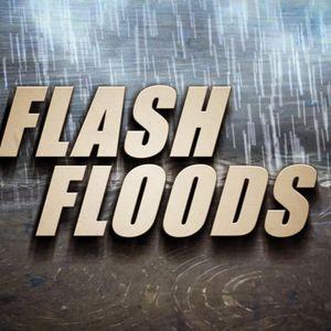 Flash Flood: Volume 3