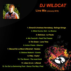 DJ Wildcat - Live Mix (January 2010)