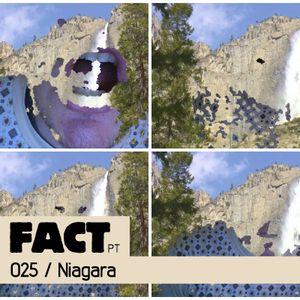FACT PT Mix 025: Niagara