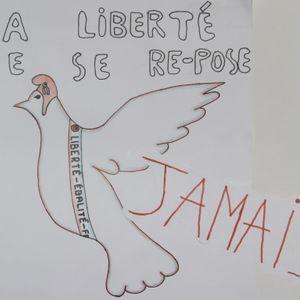 Agis pour tes droits - MAZAMET Lycée Soult Riess