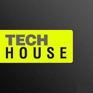 DIZ - TECH HOUSE - 12