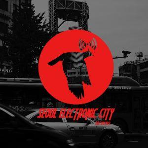 Seoul Electronic City #17
